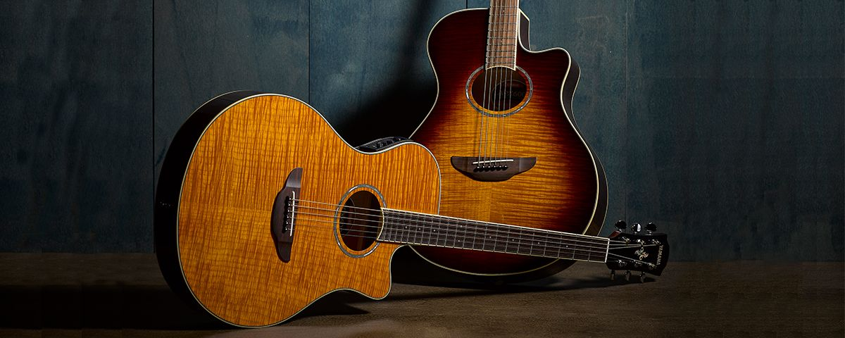 Apx Overview Acoustic Guitars Guitars Basses Musical