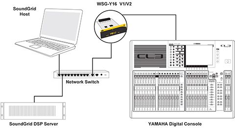 Basic 16-channel system setup: one Y-16 card, one server